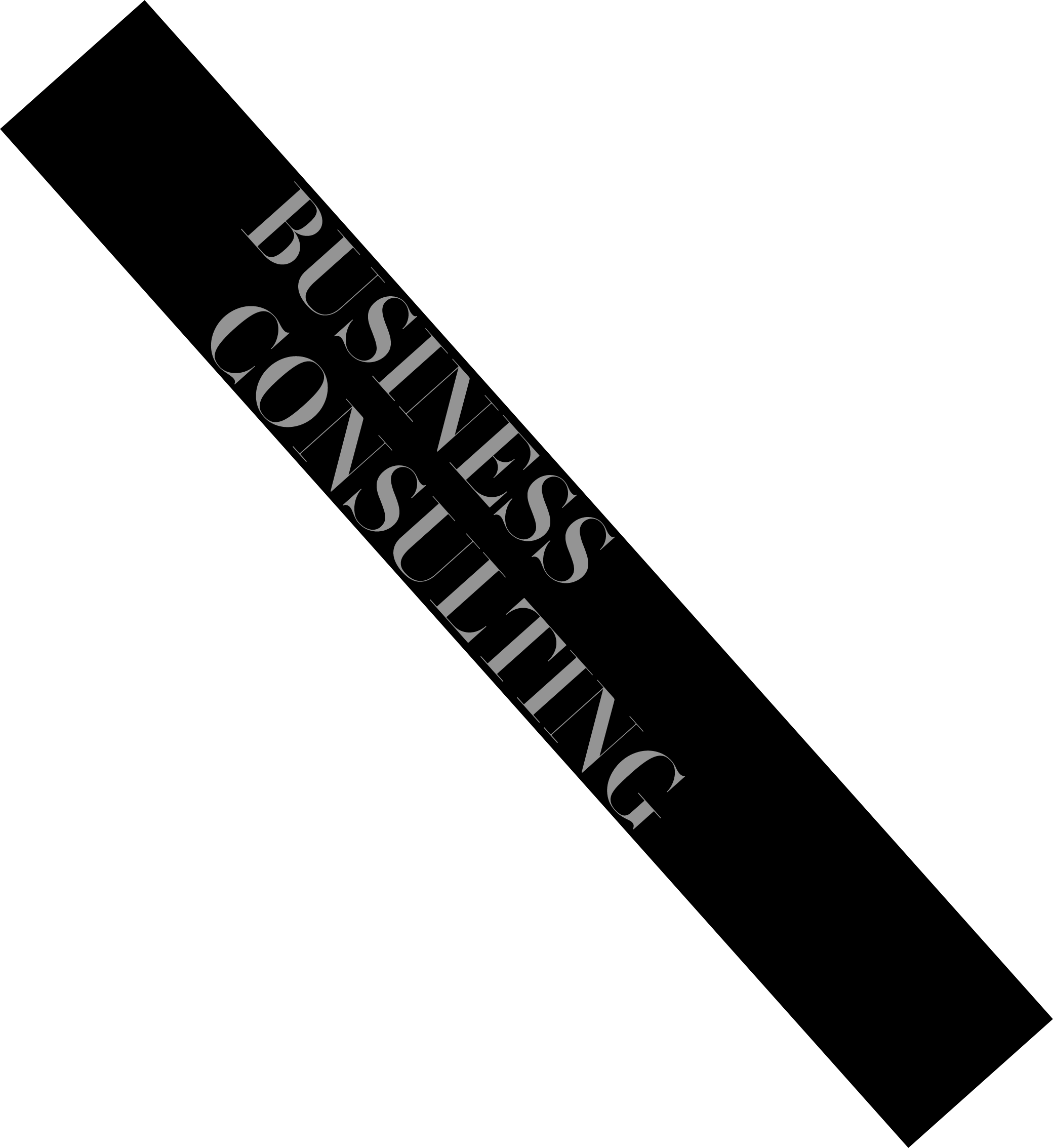 bussiness consulting